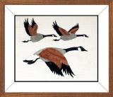 AM018-Flying-Canada-Geese-14-x-12
